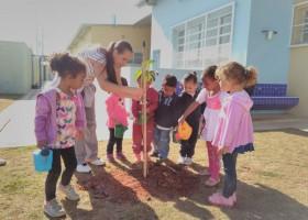 Plantio com Escolas